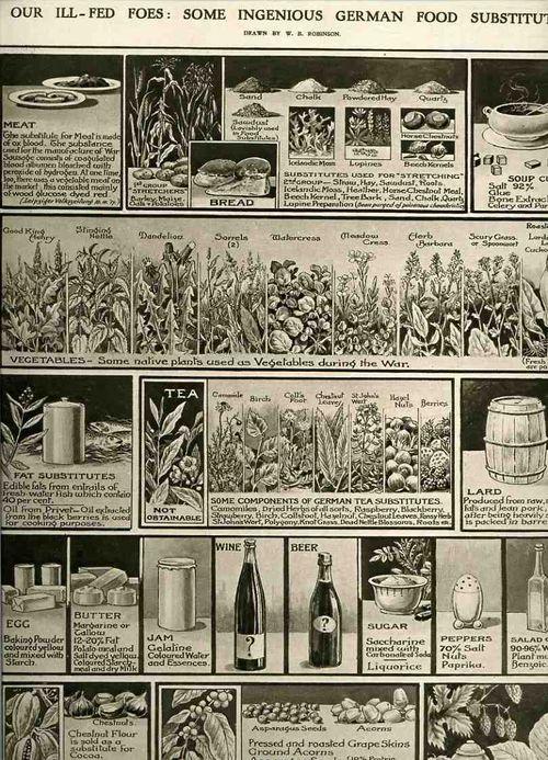 00-blog-Oct 27 ill fed foes 1918935