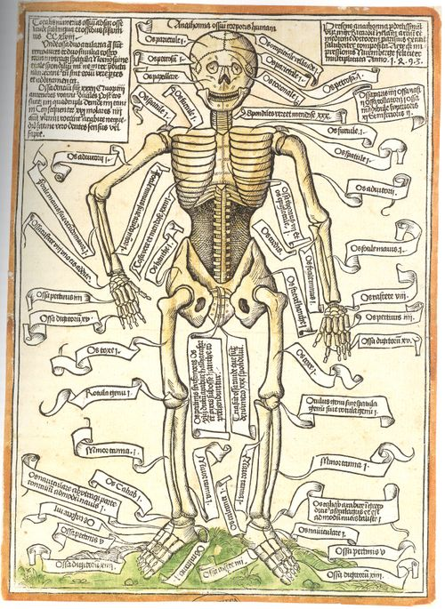 Jf Ptak Science Books A Bit On The History Of The Insides Of Things