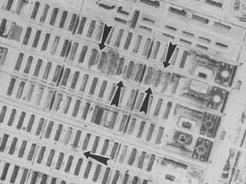 Auschwitz dots 2