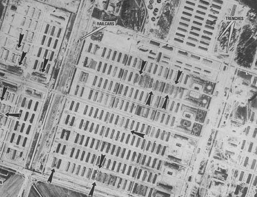 Auschwitz dots 3