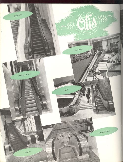 + simplicity escalators back 002