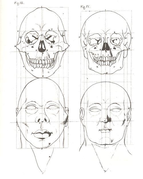 + skull