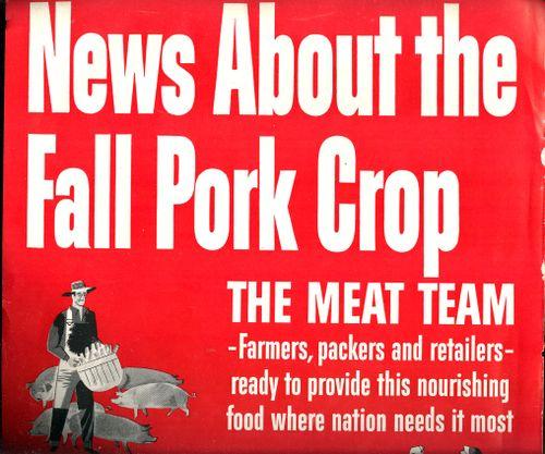 + meat pork chop