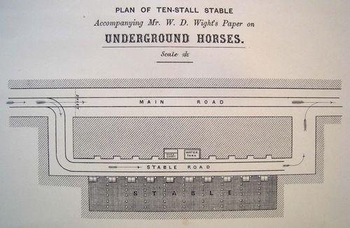 Blog jan 1 horses undergr