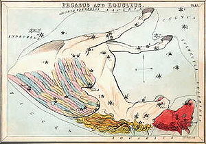 Horse constellation