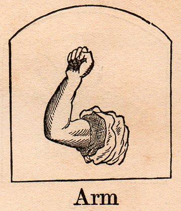 Alephbet--arm310