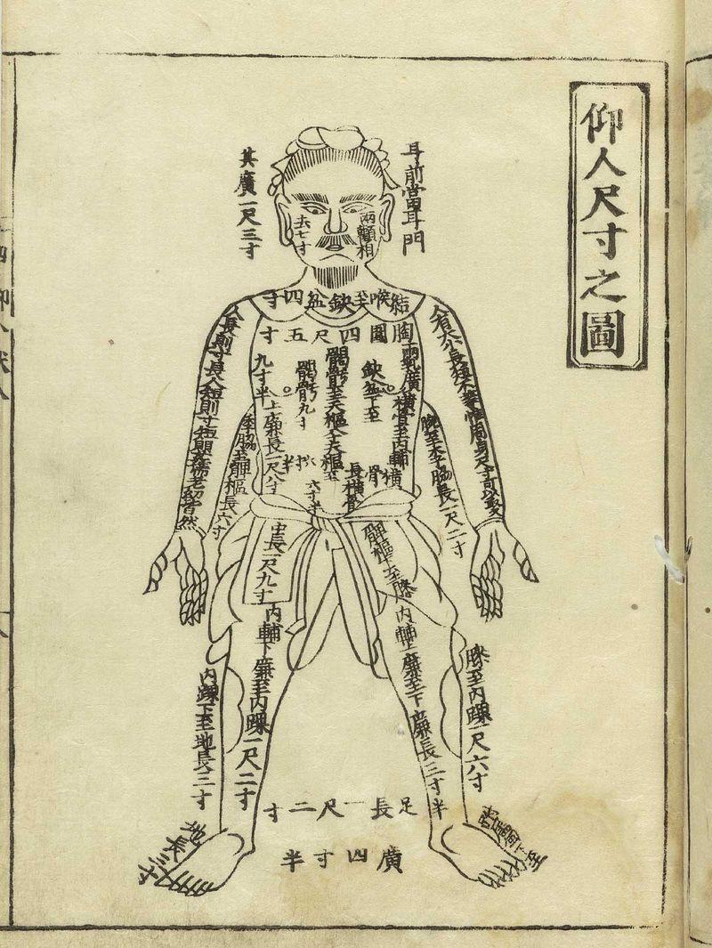 Human map hua_t01