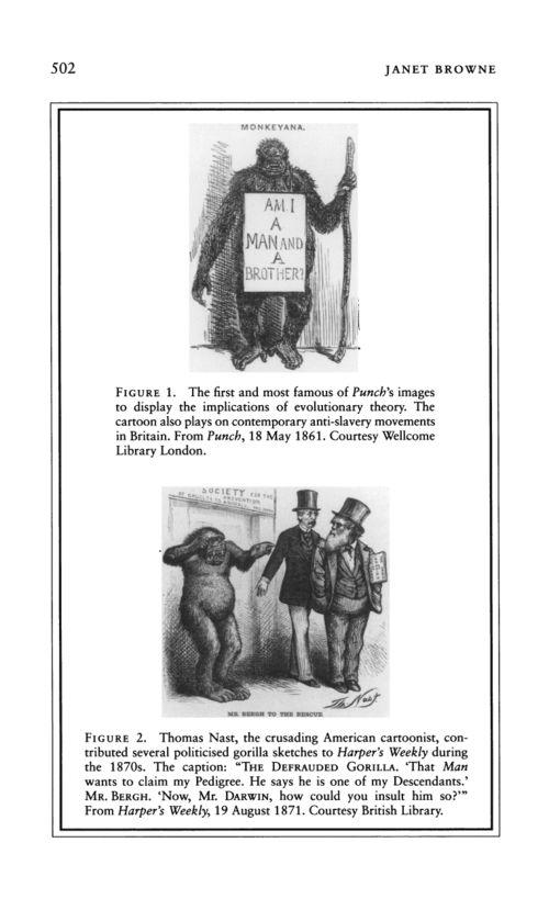 Darwin punch 18 may 1861