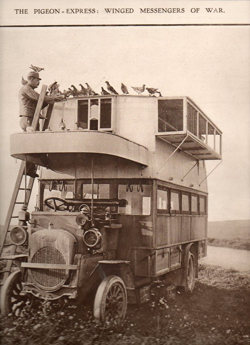 WWI--e---pigeon truck643