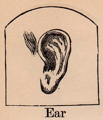 Alephbet--ear328
