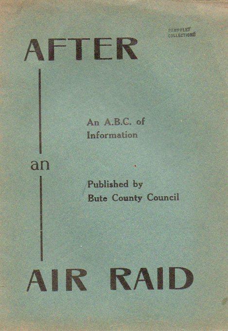 Air raid884
