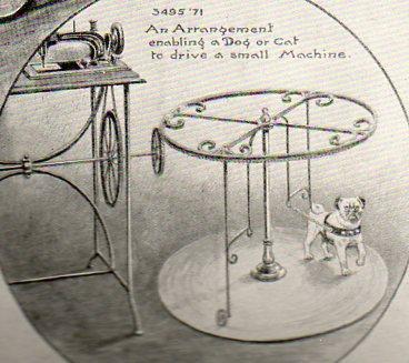 Steampunk 2 dog walker102
