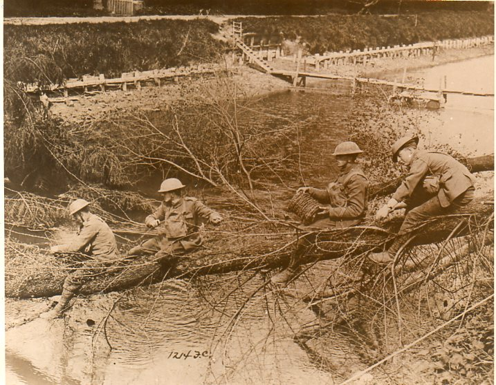 WWI photos--blowing up trees364