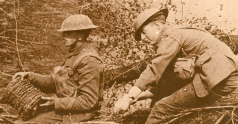 WWI photos--blowing up trees366