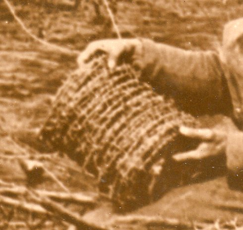 WWI photos--blowing up trees368