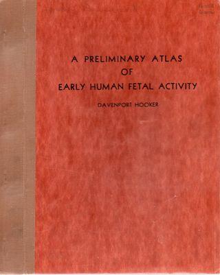 Fetal atlas012