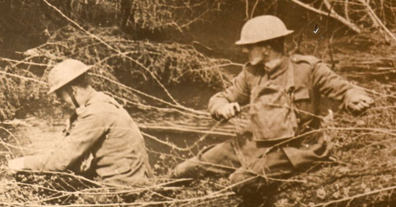 WWI photos--blowing up trees365