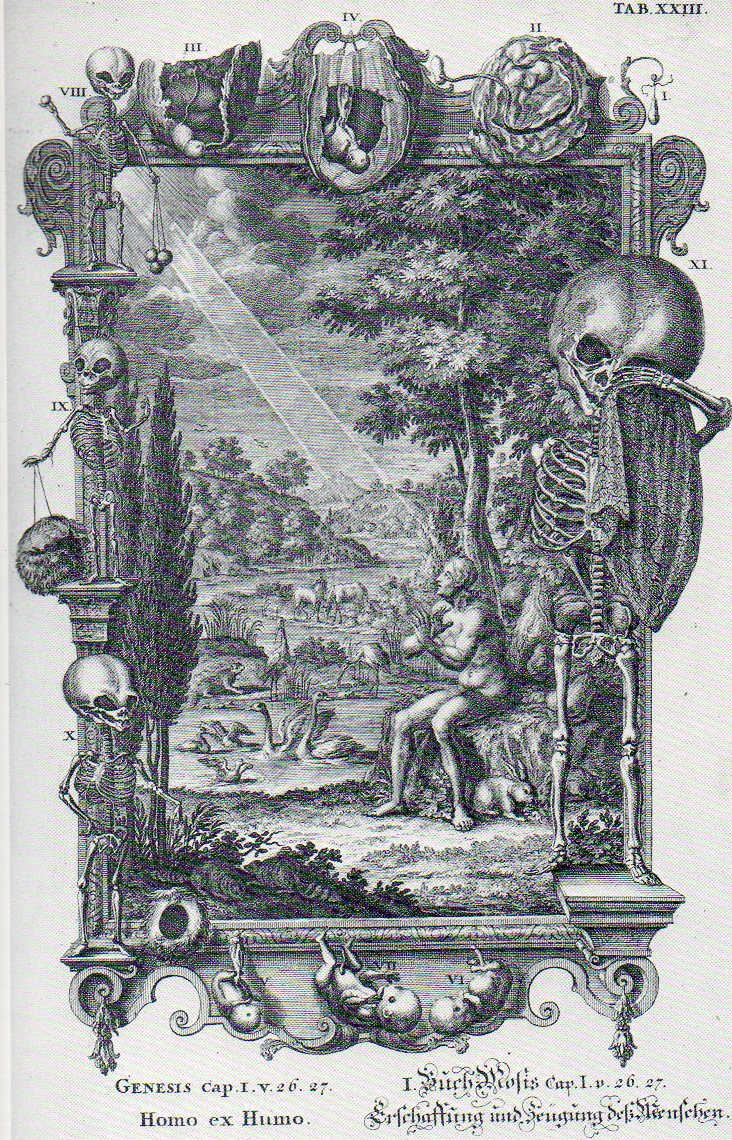 Baroque480