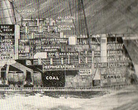 Cross section mauretannia141