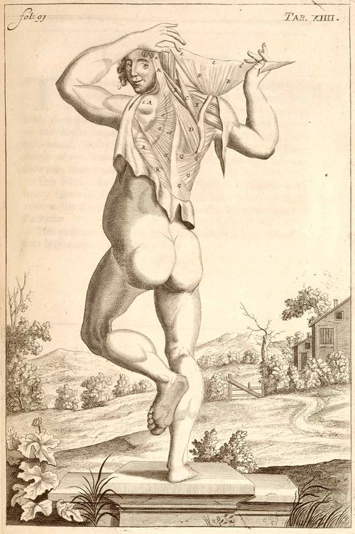 Anatomy john brown dancing