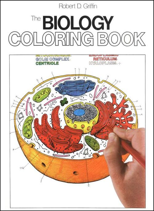 Coloring book anatomy b