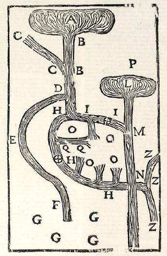 River aquaduct 3