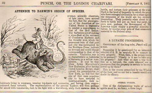 Darwin elephant392