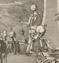 Anatomy  Crisostomo_martinez-atlas detail_edited-1