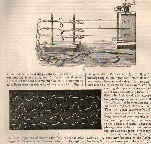 Marey mechanical heart817