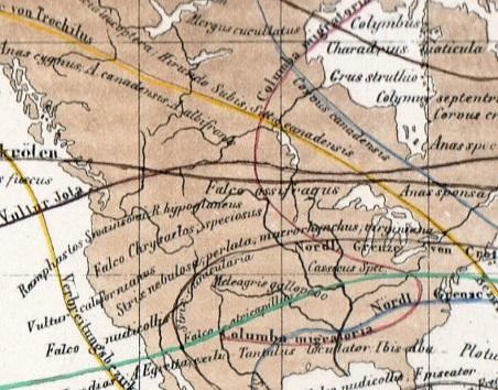 World lines018