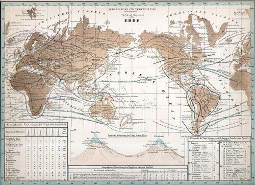 World lines017