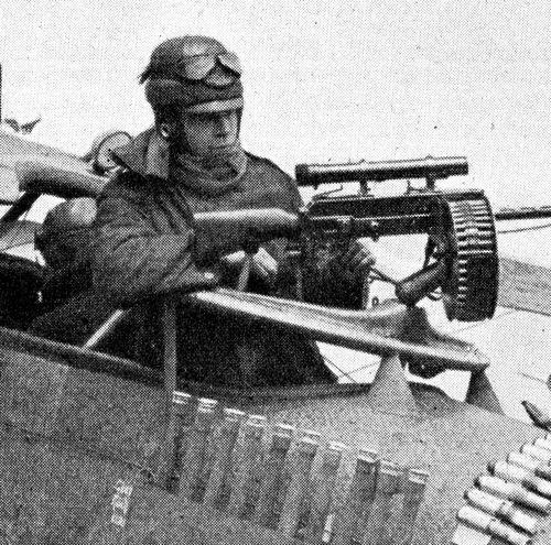 WWI pigeon233