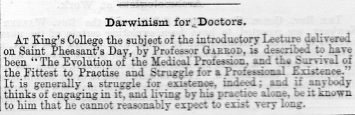 Punch darwin for doctors819