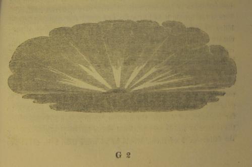 Faraday clouds