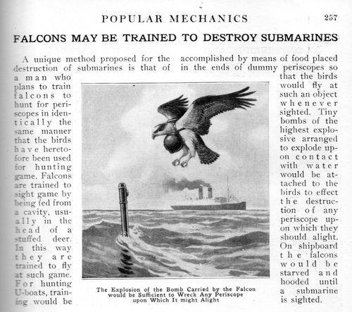 Exploding falcons956