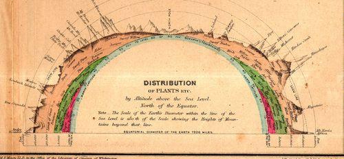 Maps elevation maury161