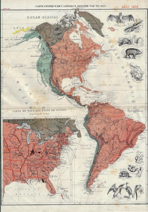 US Map infographic animals