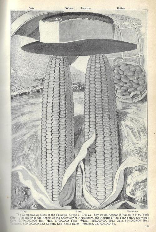Pop Mech 1912 Dataviz crops NYC