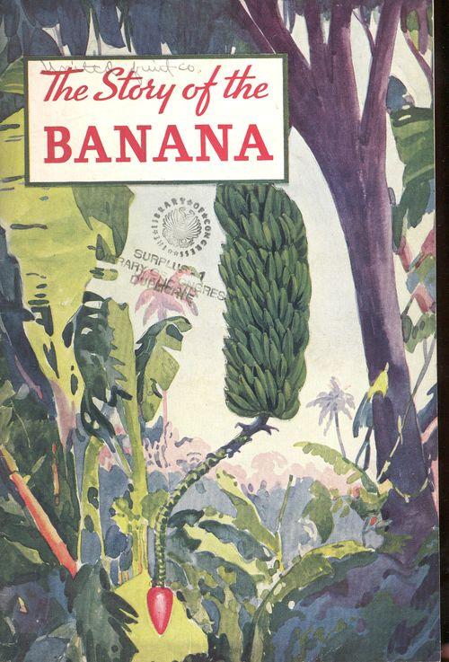 + story banana