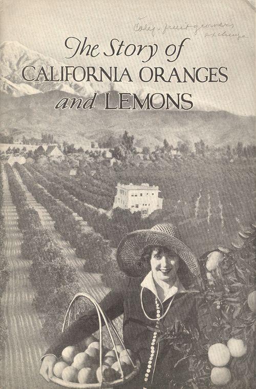 + story lemons