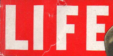 LIFE logo156