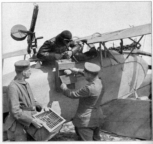 WWI pigeon231