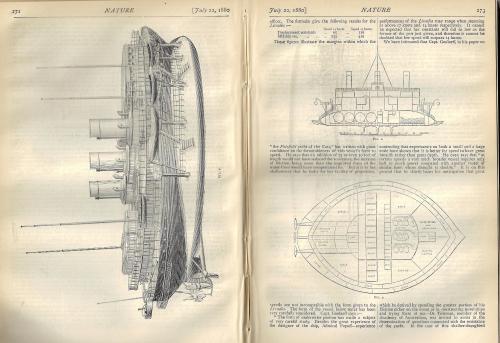 Nature 1880 Lividia