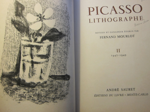 Picasso II _2_ (1)