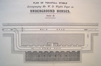 Underground_horses