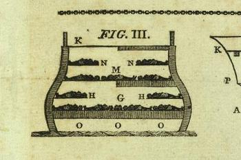 Blogslaverycross_section