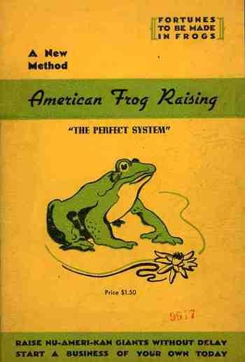 Blog1sept_16_frogs554_2